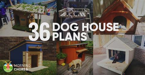diy dog house plans ideas   furry friend