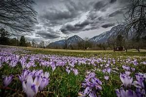 Bovec  Slovenija  Springiscoming