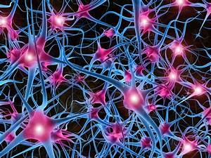 Biggest Neural Network Ever Pushes Ai Deep Learning