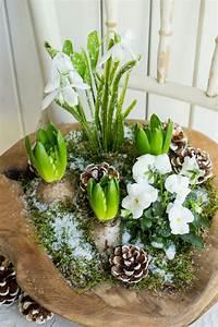 Blumen Im Winter : fr hlingshafte gr e im winter sch n bei dir by depot ~ Eleganceandgraceweddings.com Haus und Dekorationen