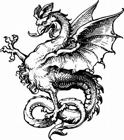 Dragon Medieval Clipart Drawing Transparent Tattoo Sea