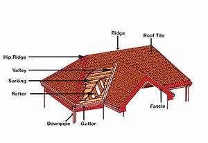 Understanding Your Roof Structure