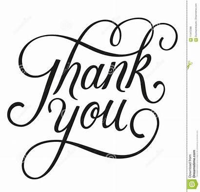 Thank Vector Script Written Lettering Letters Card