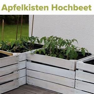 obstkisten upcycling hochbeet gemusepflanzen outdoor With französischer balkon mit upcycling im garten
