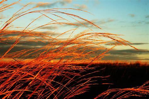 Summer Wind Diatas Langit Jogja Ibnudaiman