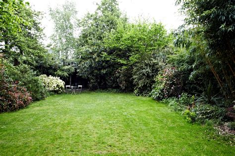 picture of backyard large yard interior design ideas