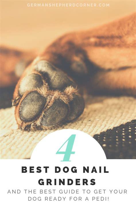 ditch  nail clippers  teach  dog  love  pedi