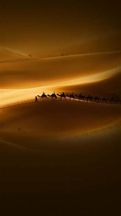 Desert Sunset Camels Riders Android Travel Wallpapers