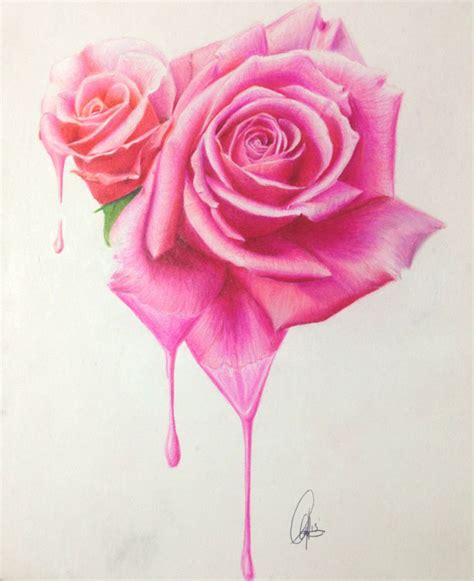 35 Beautiful Flower Drawings And Realistic Color Pencil