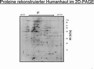Mittel Gegen Holzwurm Test : nat rliche mittel gegen fr hzeitige hautalterung besser gesund leben ~ Whattoseeinmadrid.com Haus und Dekorationen