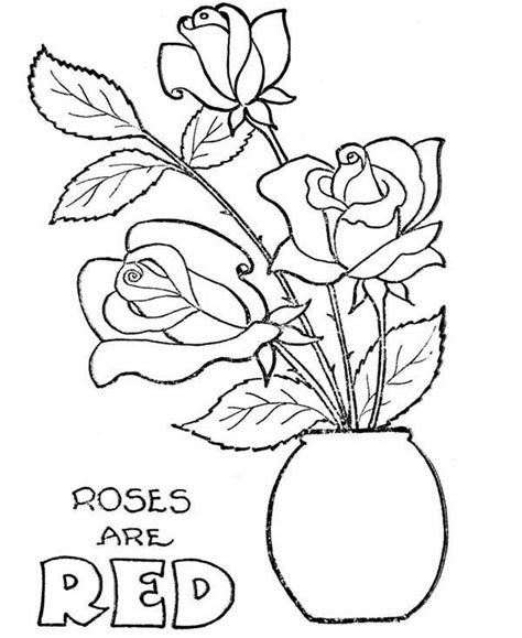 Coloring Page Flower Pot by In Flowerpot Coloring Page Print