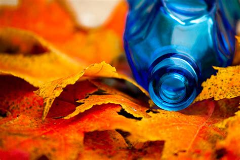 contrasting color photography  behance