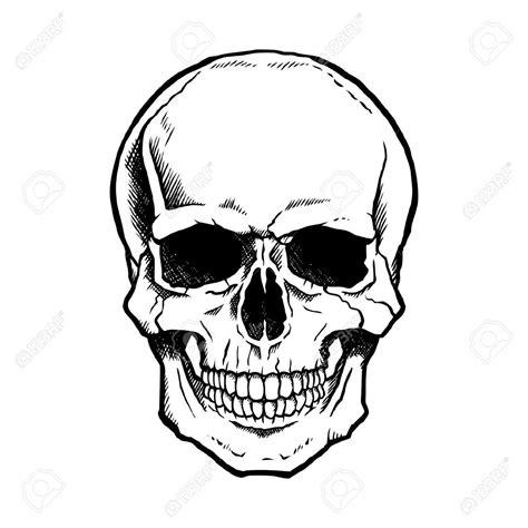 skeleton head drawing google search halloween