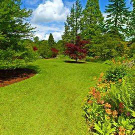Zinsniveau Mit Langzeitwirkung Profi Rat by Progema Pflanzenschutz Garten Landschaftsbau