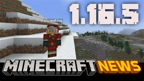 Minecraft Java Edition 1165 Update All The Changes