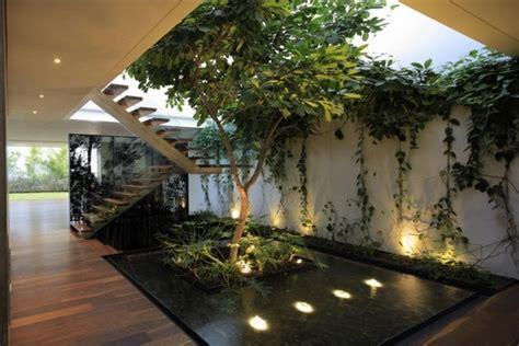 your indoor garden ideas that will amaze you
