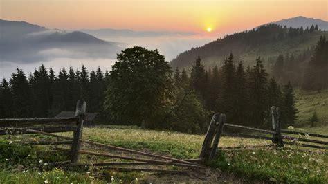 ukraine carpathians carpathian mountains mountain forest