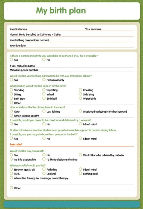 Birth Plan Template Birth Plan Template 20 Free Documents In Pdf