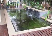 pond shapes and design koi pond design | Fountain Design & Trading | ponds ...