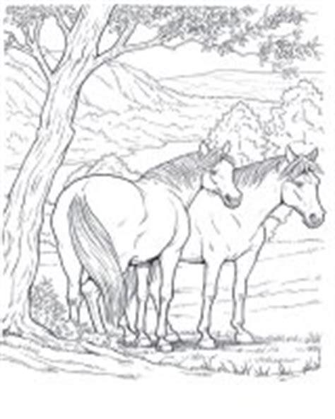 cavallo disegni da colorare  adulti