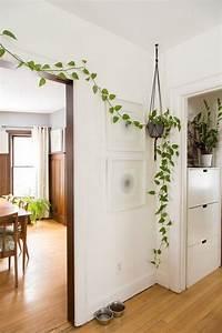 Voici les plus belles plantes d'intérieur pour donner de