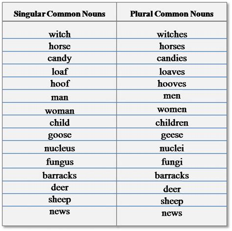Singular & Plural Nouns Definitions, Rules & Examples  Esl Buzz