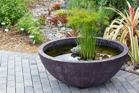 small water features for decks small water feature in a pot perfect for the patio green thumb pinterest gardens decks