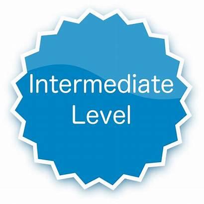 Intermediate Level Access Osx Root Badge Su