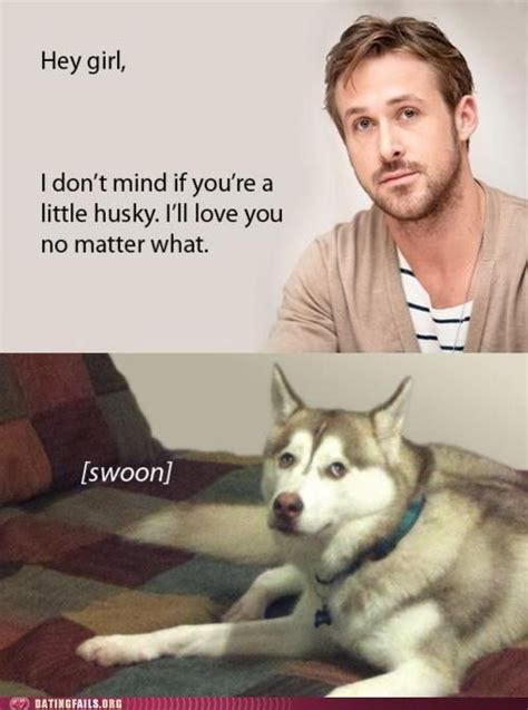 Hot Dog Girl Meme - 17 best images about just a little husky on pinterest cute husky huskies puppies and siberian