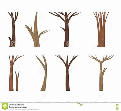 Trunk Tree Dead Forest Branch