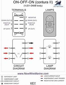 Wiring Diagram How To Wire Double Rocker Switch