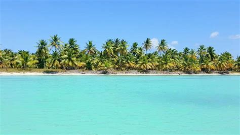 destination wedding  saona island dominican republic