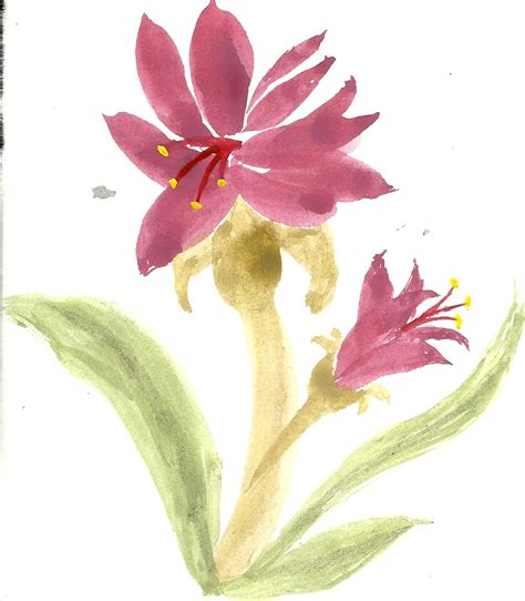 Images Of Chinese Flowers Drawings Easy Golfclub