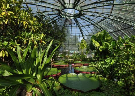 Botanischer Garten Berlin Garden Preise by Botanical Gardens Of Berlin Germany Outdoor And Indoor