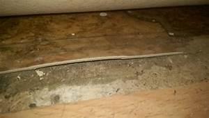 Vinyl Asbest Platten : asbest im fu bodenbelag cushion vinyl erkennung anhand ~ A.2002-acura-tl-radio.info Haus und Dekorationen