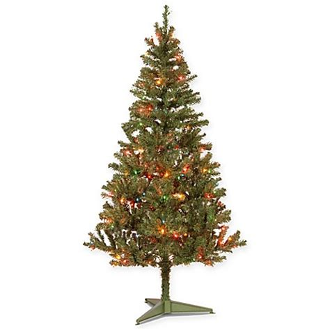 national tree 6 foot canadian grande fir pre lit christmas