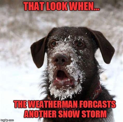 Snow Memes - snow storm memes image memes at relatably com