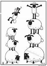 Sheep Shaun Schaf Mewarnai Mouton Druckvorlagen Schafe Pecora Magiccolorbook Schaap Drucken sketch template