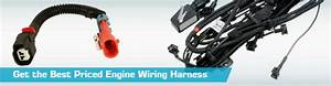 Engine Wiring Harness - Discount Prices