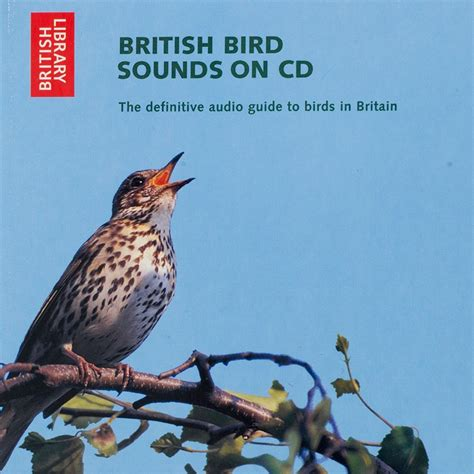 bird call sounds driverlayer search engine