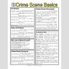 Trace Evidence Activity  Trace Evidence Name Use The Websites On The Forensic Science Page Of
