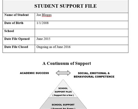 It Support Plan Template by School Support Plan Learning Support Term Plan