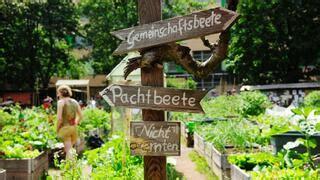 Garten Pachten Berlin Wedding by Streit Um Grundst 252 Ck In Berlin Mitte Keine Einigung Um