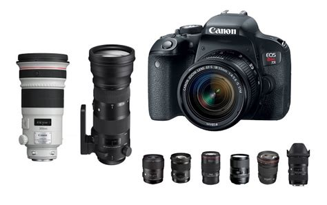 Best Lenses For Canon T7i  Daily Camera News