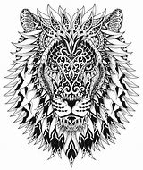 Hd Wallpapers Lion Mandala Coloring Pages Androidandroid52ml - Lion-mandala-coloring-pages