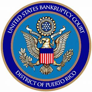 US Territory of Puerto Rico Files for Bankruptcy ...