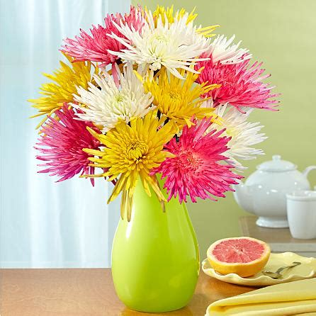 send  blooms flowers anniversary gift  usa