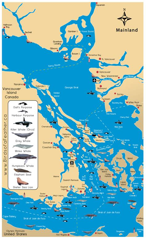 Used Marine Parts Vancouver Island by Wildlife Marine Map Zodiac Charters Vancouver