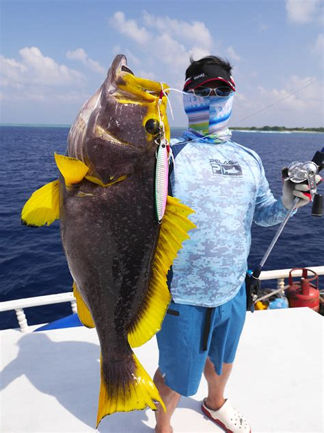 grouper yellowfin pilgrimage maldives catch report caught trip many were