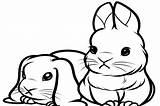 Bunny Coloring Pages Cartoon Animals Cat Reindeer Getdrawings Coloringtop sketch template